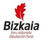 Diputación Foral Bizkaia
